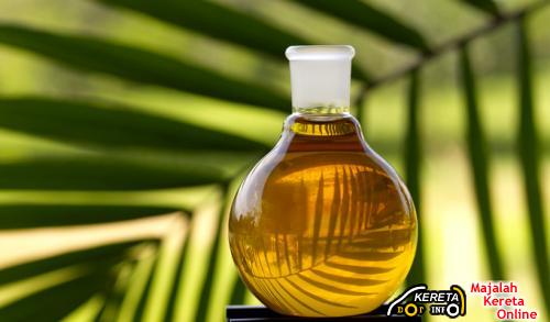 USING COOKING OIL FOR YOUR CAR ENGINE?