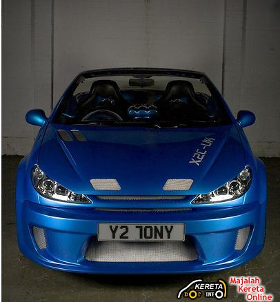 Modified Peugeot 206 1