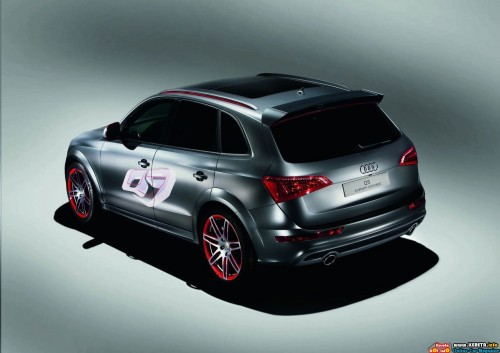 audi-q5-custom-concept-rear