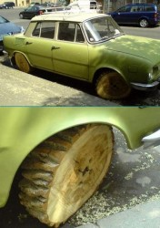 wpid-Funny-car-photo.jpeg