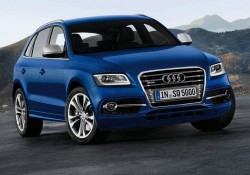 Audi-SQ5_TDI_2013_800x600_wallpaper_04