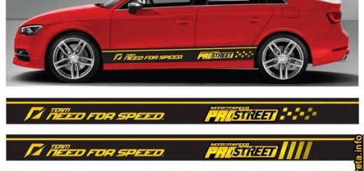 lower door stripe sticker decal vinyl side body