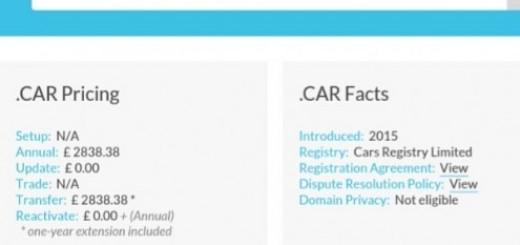 car domain name website.png